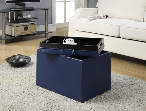 Convenience Concepts 143523BE Modern Accent Storage Ottoman