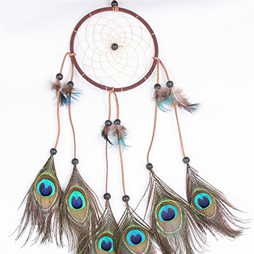 Colorfull Dream Catcher, RIUDA Dream Catcher Circular White Feathers Wall Hanging Decoration (Hoop Decoration)