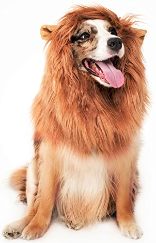 JOY4PETS Realistic & Eye Catching Lion Mane Wig for Dogs Plus Frisbee, Easy to Clean Pet Costume with Ears, Soft Feel, Comfortable Fit for Medium and Large Dogs, Perfect For Parties, Gifts & Dress