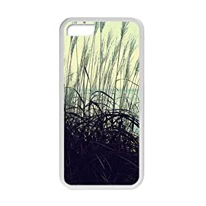 Personalized Creative Cell Phone Case For iPhone 5/5s,attractive reed view