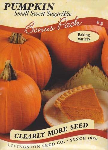 (Small Sweet Sugar/Pie Pumpkin Seeds - 6 grams)