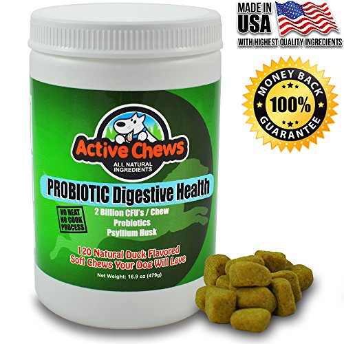 Premium Probiotics for Dogs with Digestive Enzymes for Dogs from Active Chews - Relieves Dog Diarrhea Upset Stomach Bad Breath Hot Spots for Dogs - 120 Chews with 4 Bill CFUs / 2 Chews