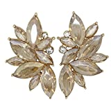 Xdaccgo Luxury Leaves Shape Glass Cluster Crystal Teardrop Flower Design Studs Earrings (Chanpagne)