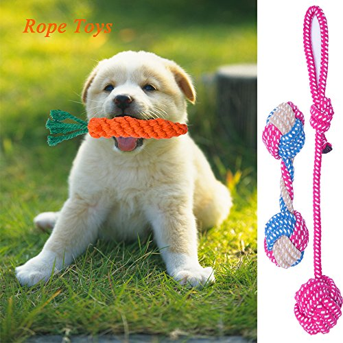 WB WEIRDBEAST Dog Toys Set for Small Dogs & Puppy, 10 Pack Dog Chew Toys Dog Rope Toys Squeaky Toys Dog Toy Ball Puppy Teething Toys Dog Plush Toys