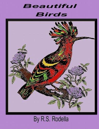 Download Beautiful Birds ebook
