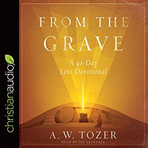 From the Grave Audiobook