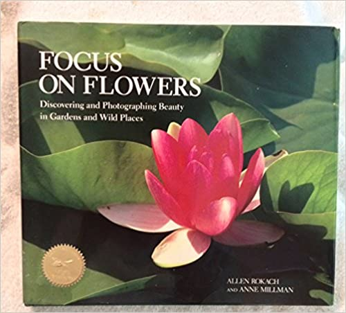Focus on Flowers: Discovering and Photographing Beauty in Gardens and Wild Places