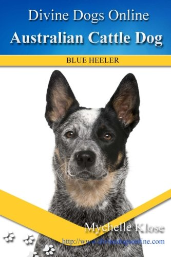 Australian Cattle Dogs: Divine Dogs Online