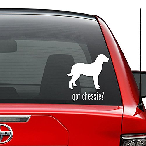 Got Chessie Chesapeake Bay Retriever Dog Pet Vinyl Decal Sticker Car Truck Vehicle Bumper Window Wall Decor Helmet Motorcycle and More - (Size 9 inch / 23 cm Tall) / (Color Matte White)