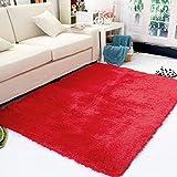 Junda Shaggy Fluffy Rugs Anti-Skid Area Rug Floor Mats Door Mats Silk Plush Carpet for Living Room Hallway Bedroom - Red, L