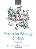 : Molecular Biology of RNA