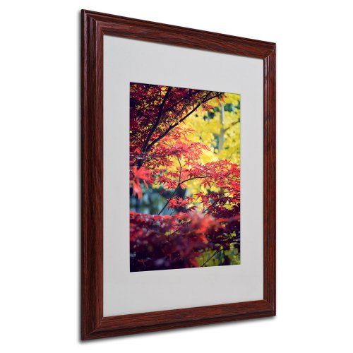 picture of Trademark Fine Art Red vs Yellow by Philippe Sainte-Laudy, Wood Frame 16x20-Inch
