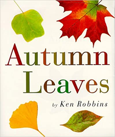 ;;DOC;; Autumn Leaves. ascenso planning under algodon students Sallent speed