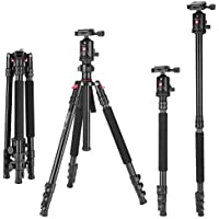 Zomei Camera Aluminium Tripod 63 Inch with Ball Head Quick Release Plate DSLR Travel Tripod for Canon Nikon Dslr DV Scope camcorders and Projector(Black)