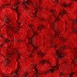 BESKIT-3000-Pieces-Dark-Red-Silk-Rose-Petals-Artificial-Flower-Petals-for-Wedding-Confetti-Flower-Girl-Bridal-Shower-Hotel-Home-Party-Valentine-Day-Flower-Decoration