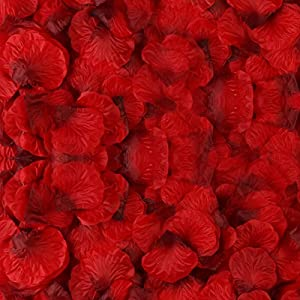 BESKIT 3000 Pieces Dark Red Rose Petals Artificial Flower Silk Petals for Valentine Day Wedding Flower Decoration