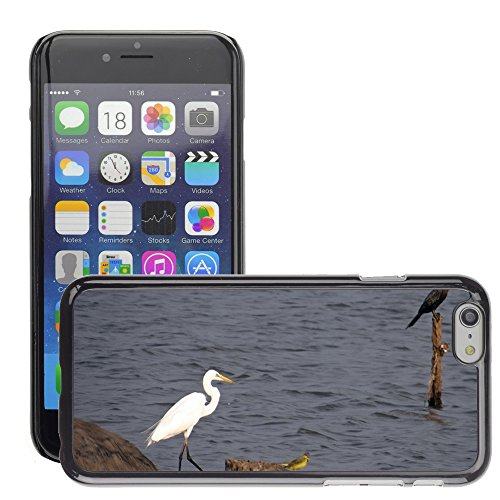 Just Phone Cases Hard plastica indietro Case Custodie Cover pelle protettiva Per // M00128100 Grande Aigrette Ardea Alba Grande // Apple iPhone 6 PLUS 5.5""