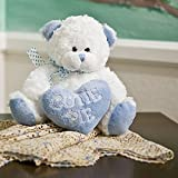 Plush Boy Cutie Pie Bear Blue Heart Pillow Lovely Gift Any Occasion