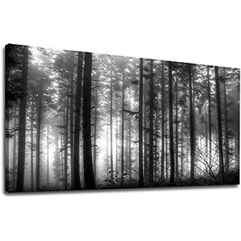 Amazoncom Black And White Landscape Canvas Wall Art Modern Wall
