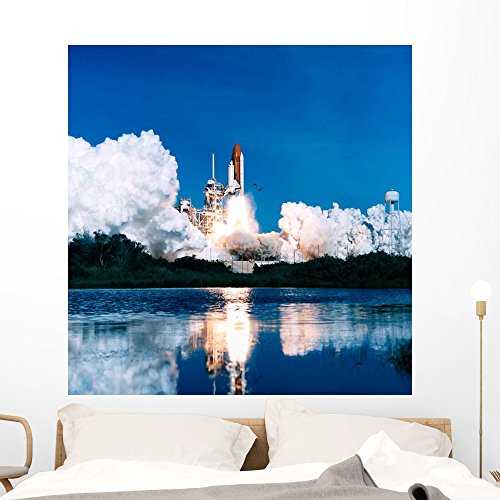 Space Shuttle Launch Wall Mural by Wallmonkeys Peel and Stick Outer Space Graphic (48 in H x 47 in W) WM231680