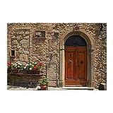 Retro Bath Rug Old Building Brick Wall Wooden Door and Flower Non-Slip Doormat Floor Entryways Indoor Front Door Mat Bathroom Rugs 15.7X23.6In