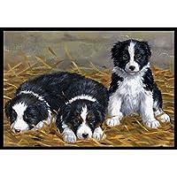 "Caroline's Treasures ASA2196MAT Border Collie Puppies Indoor or Outdoor Mat, 18"" x 27"", Multicolor"