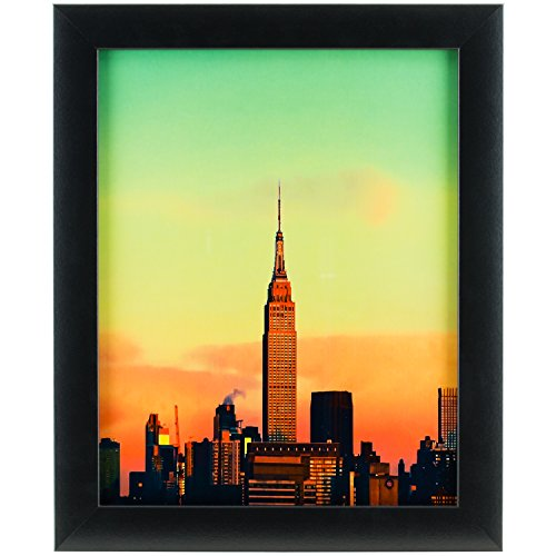 Craig Frames 1WB3BK 22 by 36-Inch Picture Frame, Smooth Wrap