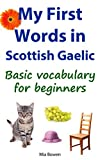 My First Words in Scottish Gaelic: Basic vocabulary for beginners (Learn Scottish Gaelic Book 1)