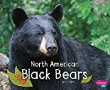 North American Black Bears (Woodland Wildlife)