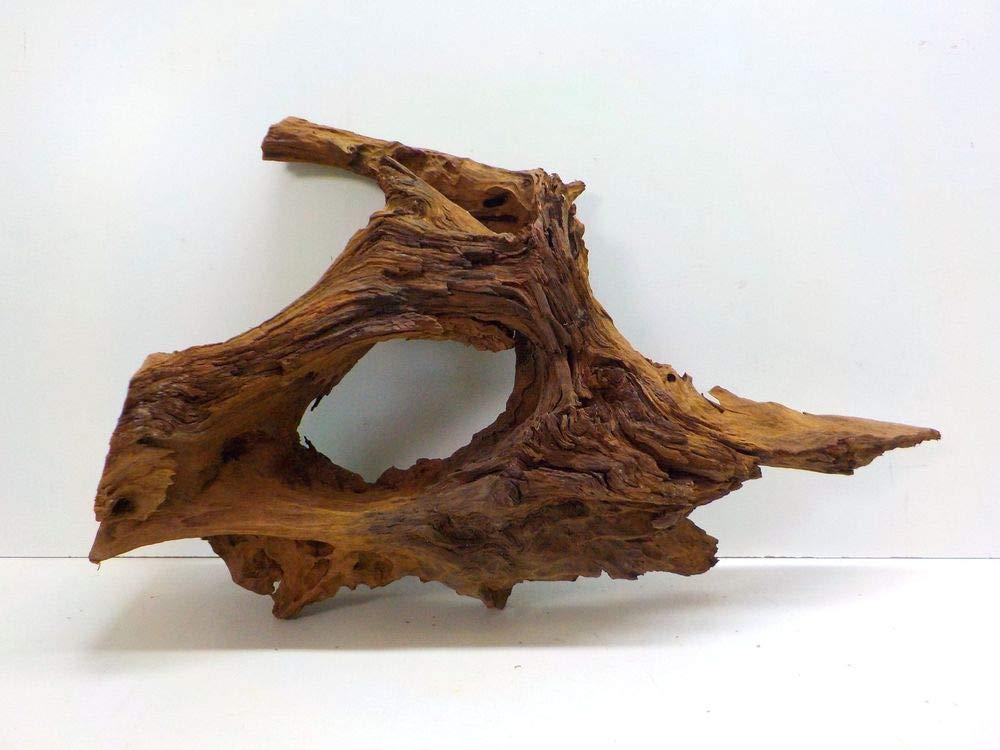 Aquaristikwelt24 XXL radice di mangrovia Dimensioni 93 X 34 X X X 57 N. 7940 Acquario radice Mangrove Legno Decorazione 64f172