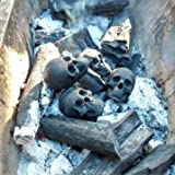 Skull Charcoal briquettes Handicrafts for Indoor or Outdoor Fireplaces, Firepit, Campfire, Halloween Decor, BBQ (Qty 6, Black)