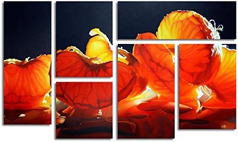 Trademark Fine Art Mandarin Orange
