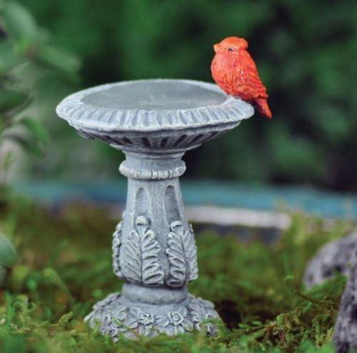 Miniatura Jardín de hadas bebedero para pájaros cardinales: Amazon.es: Jardín