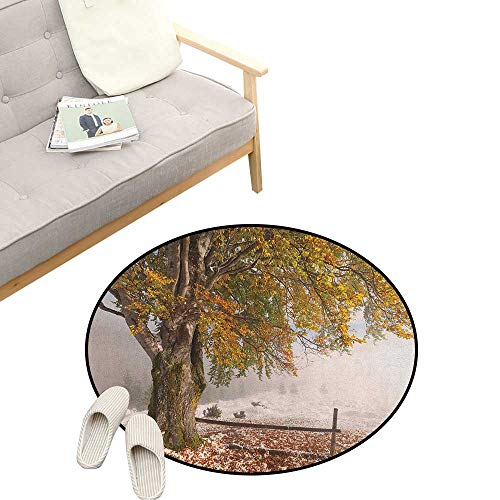 (Leaves Round Rug ,Birches of A Big Tree in The First Fall of Snow December Country Blizzard Frozen Nature, Flannel Microfiber Non-Slip Soft Absorbent 31