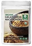 Naturevibe Botanicals Organic Gelatinized Maca Powder (16 ounce), Lepidium Meyenii Walp | Gluten-Free & Non-GMO | Enhances Stamina