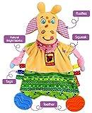 Newborn Teething Blanket with Tags - Newborn Toys - Tag Blanket - Teething Blanket - Tag Toys - Activity Blanket - Teething Toys - Infant toys - for Boys Girls 0 3 6 Months Babies