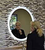 MAM43036 30''w X 36''t Oval Back Lighted Wall Mounted LED Vanity Mirror