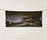 Anniutwo Rustic,Travel Towel,Old Haunted Abandoned Wood House at The Dark Night with Bats Scary Horror Paint,Quick-Dry Towels,Multicolor Size: W 14'' x L 27.5''