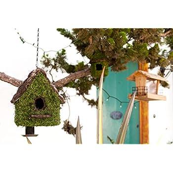 """Super Moss (56052) Maison Woven Birdhouse Medium, 9.5"""" by 10.5"""", Fresh Green"""