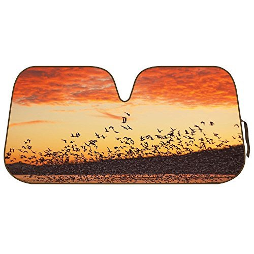 Double Bubble Auto Sun Shade for Car SUV Truck - Silhouette Flock of Birds at Sunset - Jumbo Folding Accordion]()