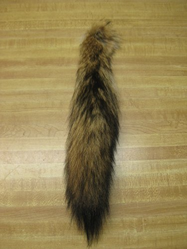 Tanned Coyote Tail ()