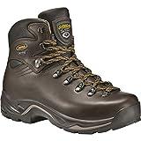 Asolo TPS 520 GV Boot - Men's Chestnut 10