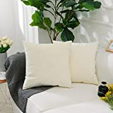 HOME BRILLIANT Cushion Cover with Zipper for Bed Home Decor Supersoft Solid Velvet Plush Decorative Throw Pillow,2 Packs 20''x20'' (50cm), Cream Yellow