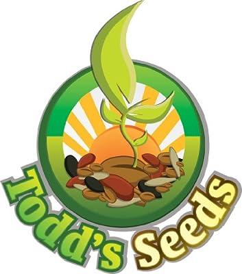 Wheatgrass Seeds One Pound Hard Red Wheat Todd/'s Seeds Cat Grass Seeds