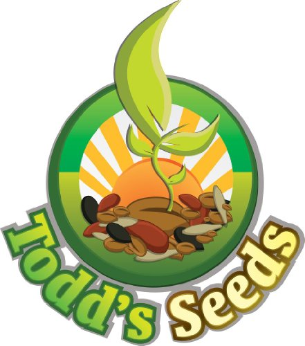 Todd's Seeds, Wheatgrass Seeds, One Pound, Cat Grass Seeds, Hard Red Wheat - http://coolthings.us