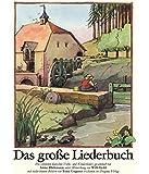 Das große Liederbuch. 204 deutsche Volks- und Kinderlieder. Mit 156 bunten Bildern von Tomi Ungerer