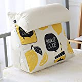 DULPLAY Pp-Cotton Reading Pillow,with Memory Foam Cartoon Back Rest Lumbar Removable Great as backrest for Books or Gaming -B 45x45x45cm(18x18x18)