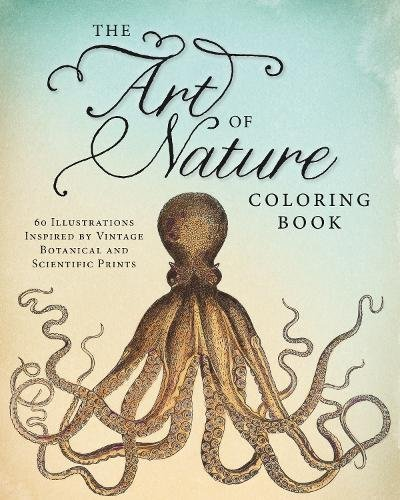 Art Nature Coloring Book Illustrations product image