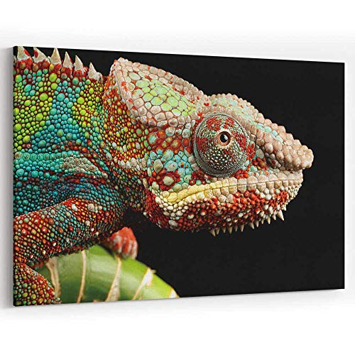 Close up of a Chameleons Head Canvas Art Wall Dcor Painting Wall Art Picture Print on Canvas