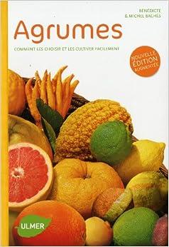 Agrumes - Comment les choisir et les cultiver facilement